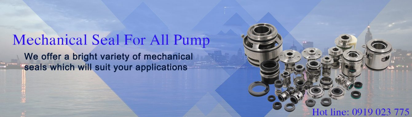 Minh Anh – Pump and Mechanical Seal